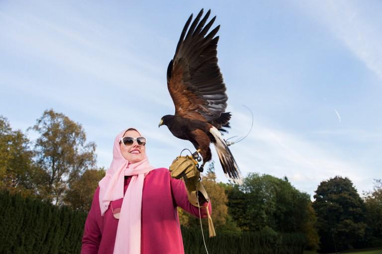 Tourism Shoot of Falconry at Gleneagles Scotland